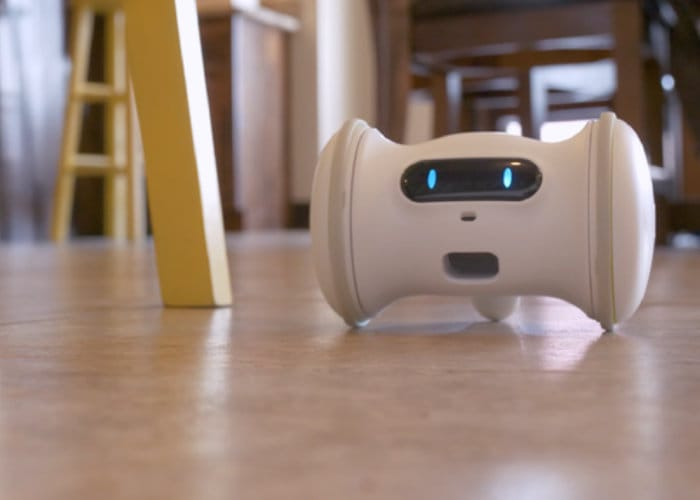 VARRAM Smart Robot Pet Companion