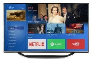 Netflix Coming To Sky Q In November
