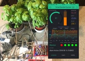 Raspberry Pi smart growing system monitors and waters your plants