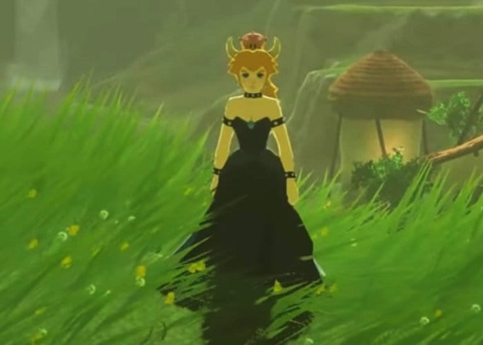 Zelda Breath of the Wild Bowsette