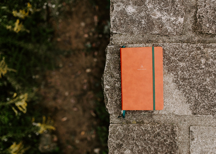 Monk Manual 90-day planner