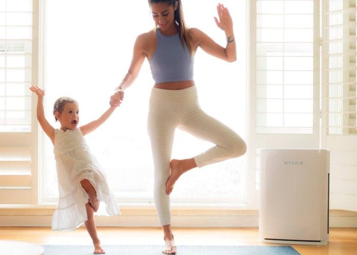 Wynd Halo smart home air purifier
