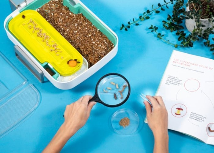 Hive Explorer STEM smart insect farm
