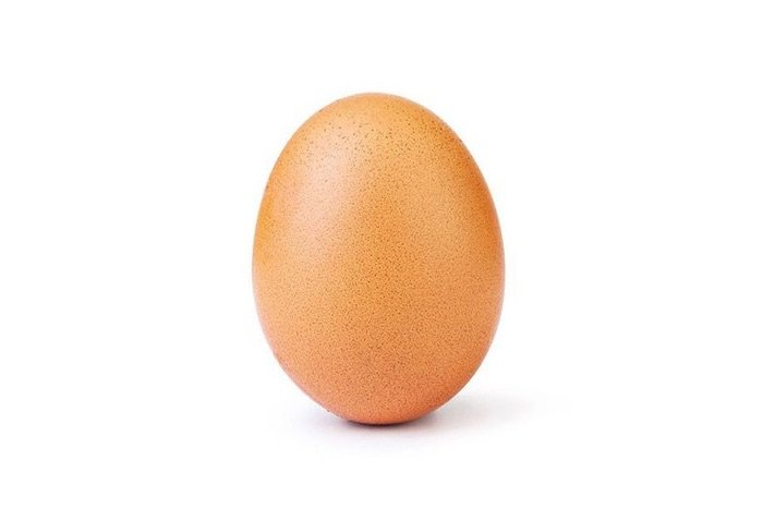 world record egg