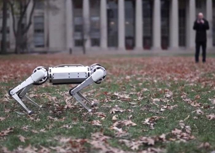Mini Cheetah Robot