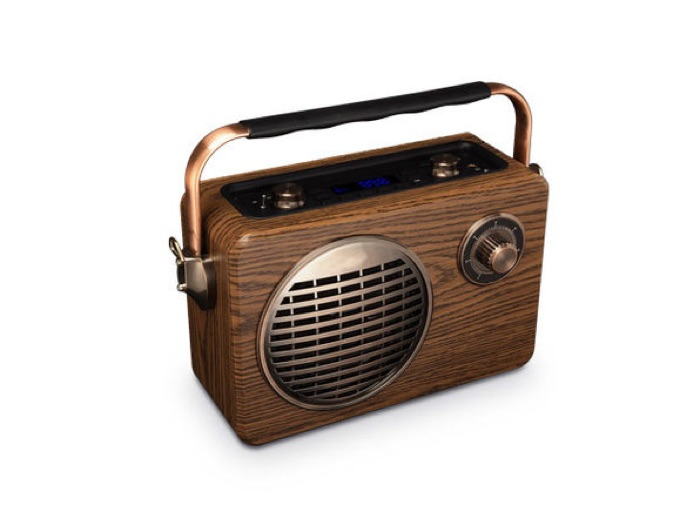 LuguLake Handheld Multi-Functional Retro Bluetooth Speaker