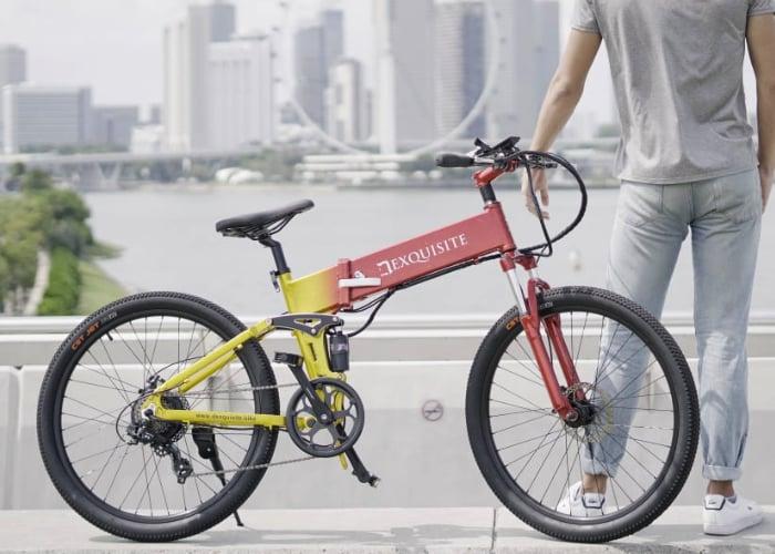 Dexquisite DX electic bike
