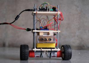 Insect piloted self-balancing robot