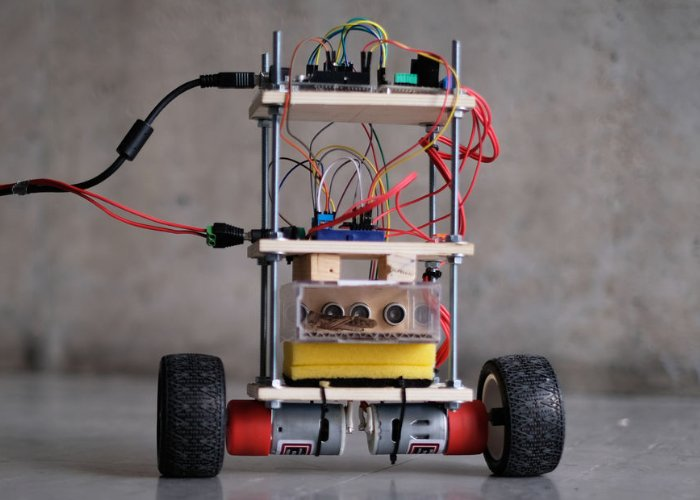 Insect piloted self-balancing robot