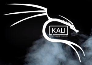 Kali Linux Pi 4
