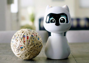 Kiki robot companion