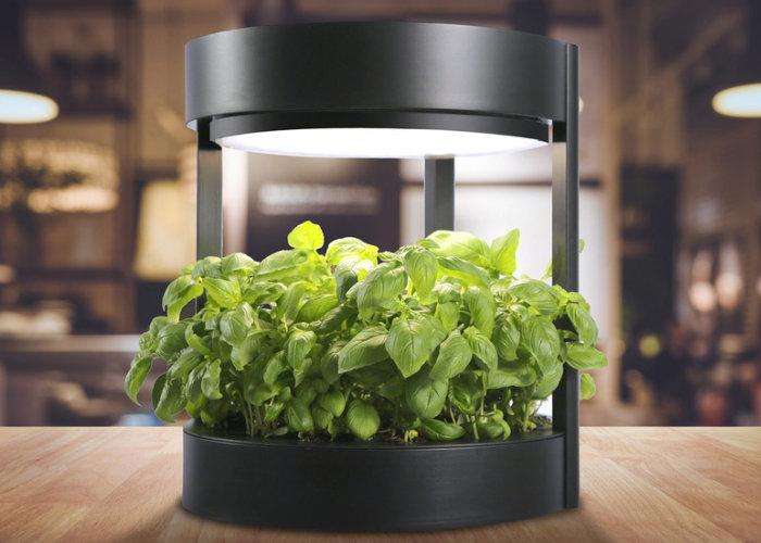 Verdeat indoor garden for herbs and vegetables