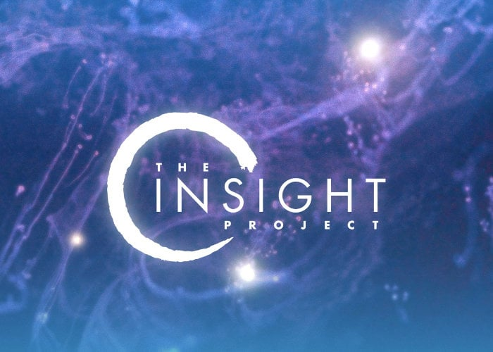 Insight Project