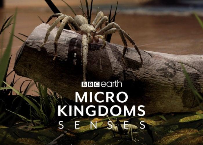 BBC Micro Kingdoms