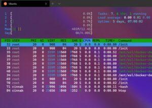 Windows 10 Linux GUI apps