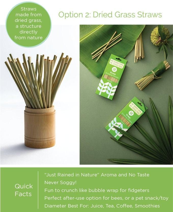 environmentally friendly straws
