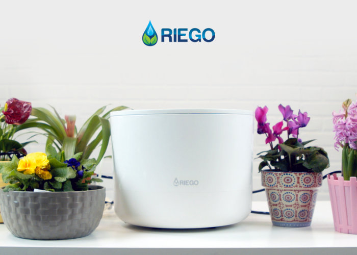 Riego automatic house plant watering system