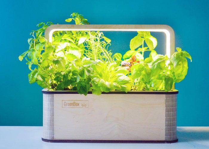 BerlinGreen smart indoor growing system Green Box