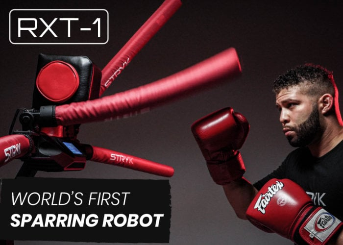 Sparring robot
