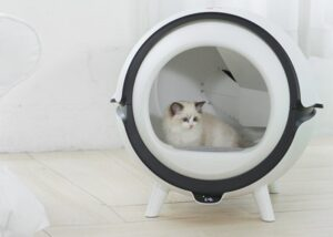 automatic cleaning cat litter-box