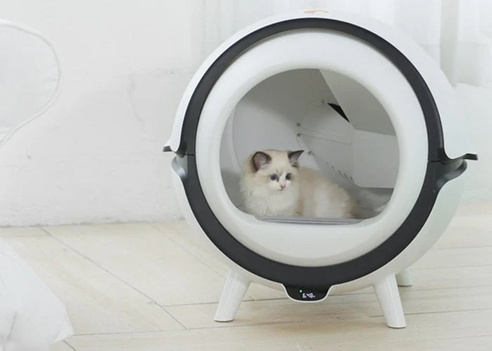 automatic cleaning cat litter box
