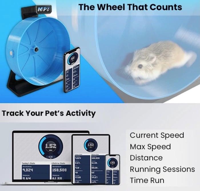 electronic Hamster Wheel