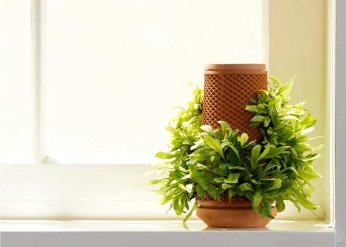 terraplanter plant growing system