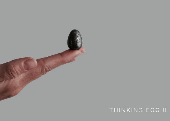 Thinking Egg