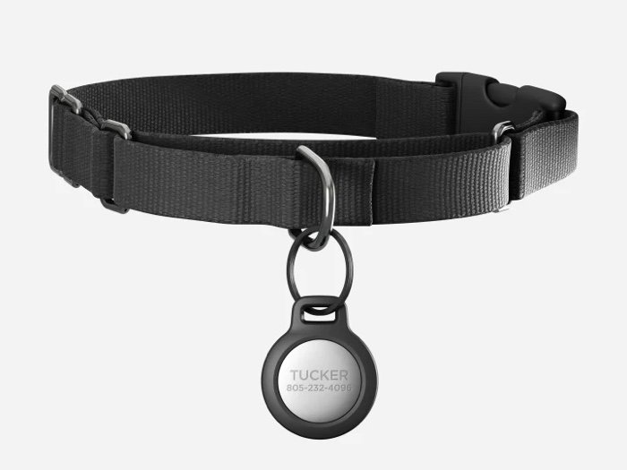 Nomad Rugged Pet Tag