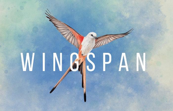 Wingspan Xbox game