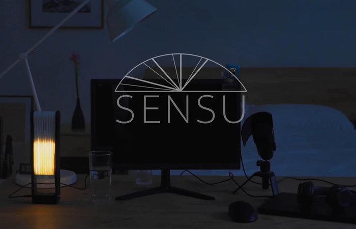 Sensu webcam light