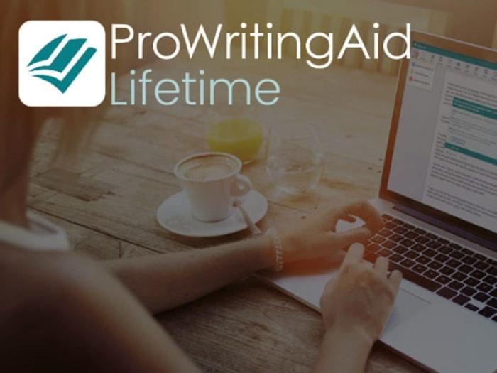 Bestselling ProWritingAid Lifetime Subscription Bundle