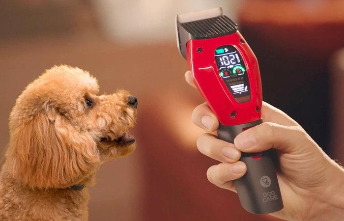 Dog care home pet clipper
