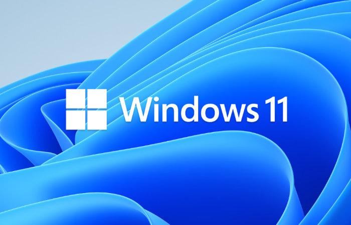 Microsoft Windows 11operating system