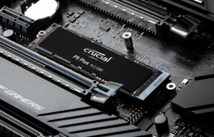 Crucial P5 Plus M.2 NVMe Gen4 SSDs