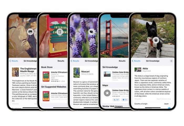 iOS 15 beta 5 and iPadOS 15 beta 5