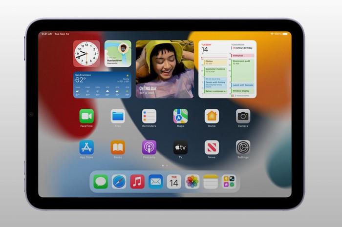 Apple iPad mini 2021 iOS 15