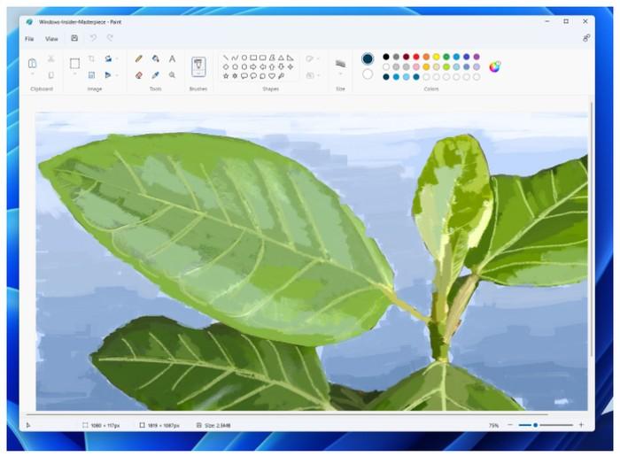 Windows paint app