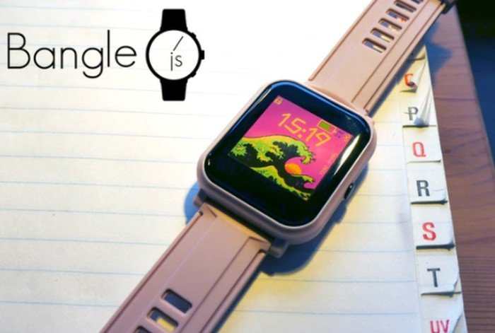 programmable smartwatch