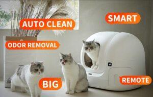 Petkit Pura Max cat litter box