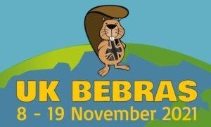 UK Bebras Computational Thinking Challenge